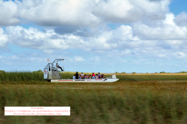 The Florida Everglades - Regional Travel News - Trend Magazine Online